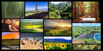Maui Tours